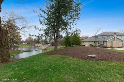 10731 LANDINGS DR, Orland Park, IL 60467 - Photo 2