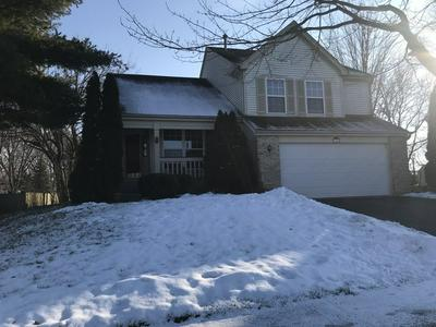 1005 GREENFIELD AVE, SOUTH ELGIN, IL 60177 - Photo 1