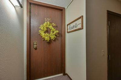 484 TIMBER RIDGE DR APT 105, Carol Stream, IL 60188 - Photo 2