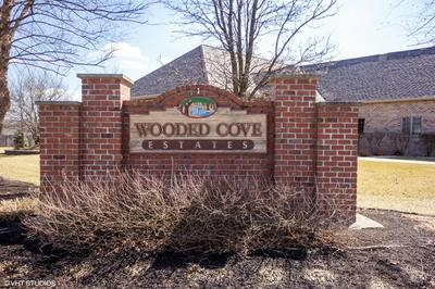 21151 S WOODED COVE DR, ELWOOD, IL 60421 - Photo 1
