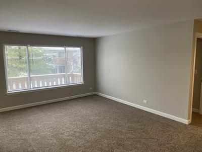 336 MULBERRY CT APT D2, Bartlett, IL 60103 - Photo 2