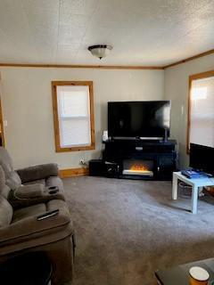 113 S BENTON ST, Winnebago, IL 61088 - Photo 2