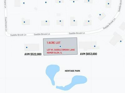LOT 61 SADDLE BROOK LANE, HOMER GLEN, IL 60491 - Photo 2