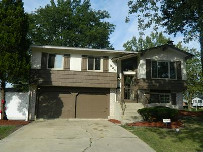 924 SAMSON DR, UNIVERSITY PARK, IL 60484 - Photo 1