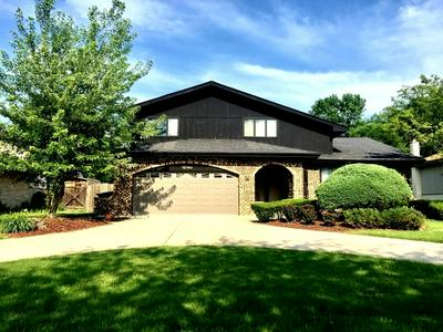 12148 FORESTVIEW DR, Orland Park, IL 60467 - Photo 1