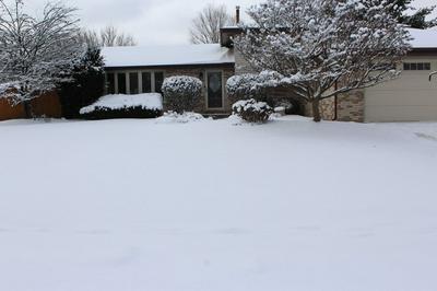 1105 ALAMOSA ST, NEW LENOX, IL 60451 - Photo 2