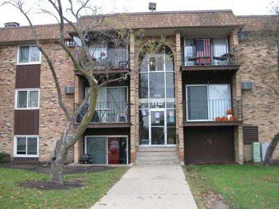 1175 HIGGINS QUARTERS DR # 11-210, Hoffman Estates, IL 60169 - Photo 1