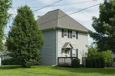 110 N JACKSON ST, PHILO, IL 61864 - Photo 1