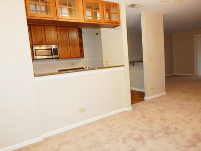 209 GLENGARRY DR APT 302, Bloomingdale, IL 60108 - Photo 2