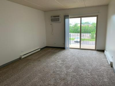 240 SPRINGHILL DR APT 206, Roselle, IL 60172 - Photo 2
