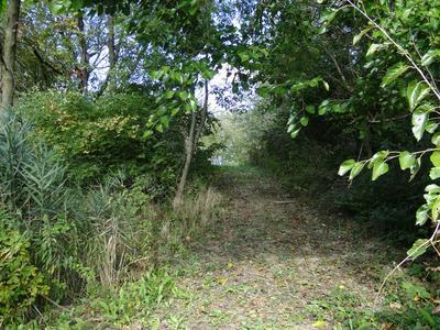 LOT 31 LAKE METONGA TRAIL, GRANT PARK, IL 60940 - Photo 2