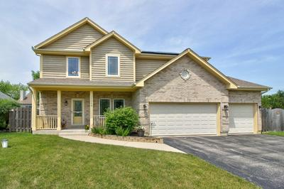 26048 W LARKIN LN, Ingleside, IL 60041 - Photo 1
