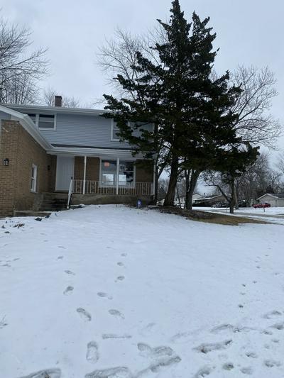 927 BLACKHAWK DR, University Park, IL 60484 - Photo 1