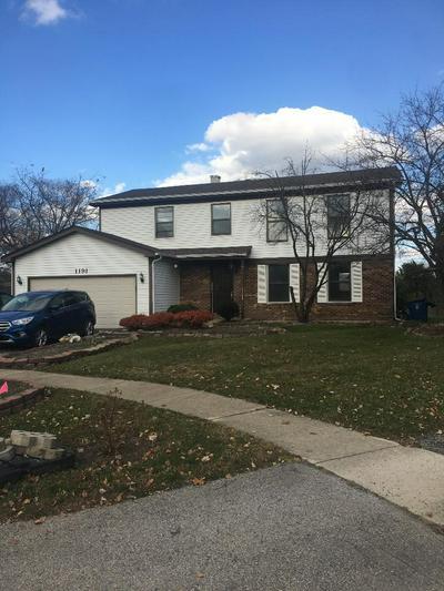 1191 PINETREE LN, Bartlett, IL 60103 - Photo 1