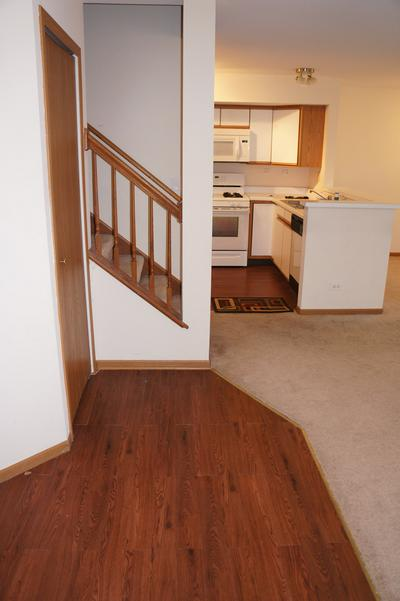 223 MANSFIELD WAY, Roselle, IL 60172 - Photo 2