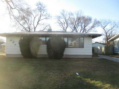 17 INDIANWOOD DR, Thornton, IL 60476 - Photo 1