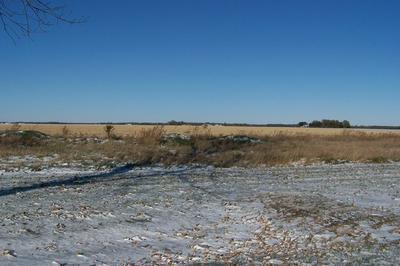 922 N 1ST ST, Fairbury, IL 61739 - Photo 1