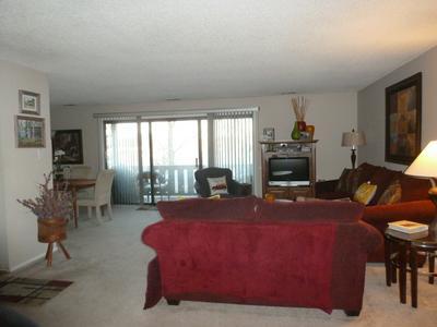 11151 COTTONWOOD DR # 19D, Palos Hills, IL 60465 - Photo 2