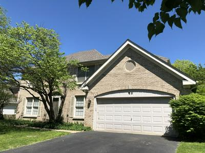 65 NICOLETTE AVE, Schaumburg, IL 60173 - Photo 1