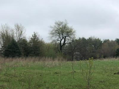 4N747 CITATION LN, Campton Hills, IL 60119 - Photo 2