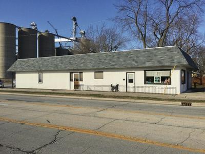 101 E SPRINGFIELD RD, ARCOLA, IL 61910 - Photo 2