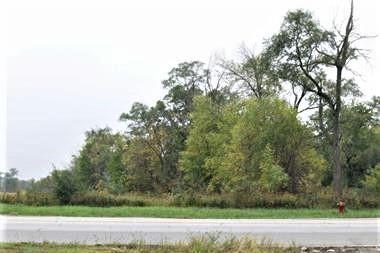 1051 E GLENWOOD DYER RD, Glenwood, IL 60425 - Photo 1