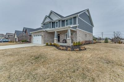 1971 WATER CHASE DR, NEW LENOX, IL 60451 - Photo 2