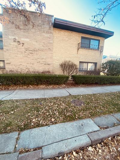 257 WASHINGTON BLVD APT 8, Oak Park, IL 60302 - Photo 2