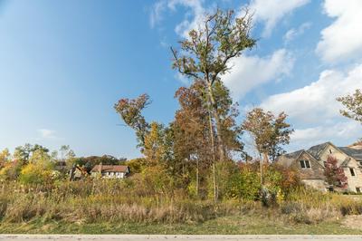 391 PRESERVE LN, Wood Dale, IL 60191 - Photo 1