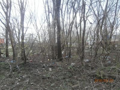 LOT 736-30-14W, Chebanse, IL 60922 - Photo 1