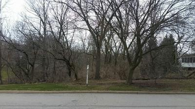 LOT 30 MANCHESTER AVENUE, Batavia, IL 60510 - Photo 2