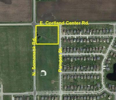 20740 N SOMONAUK RD, Cortland, IL 60112 - Photo 1