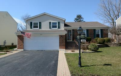 210 CHATHAM LN, ROSELLE, IL 60172 - Photo 1