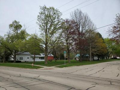 201 N ELIDA ST, Winnebago, IL 61088 - Photo 2