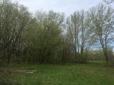 35150 S ZILM RD, Wilmington, IL 60481 - Photo 1