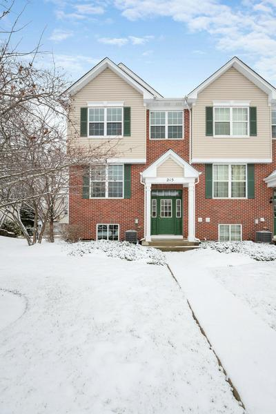 215 S OAK CREEK LN, Romeoville, IL 60446 - Photo 2