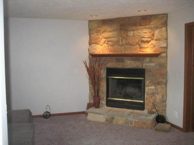 601 W ANNDON ST, Braidwood, IL 60408 - Photo 2