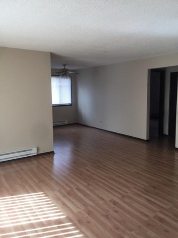 5160 THOMAS DR APT 3W, RICHTON PARK, IL 60471 - Photo 2