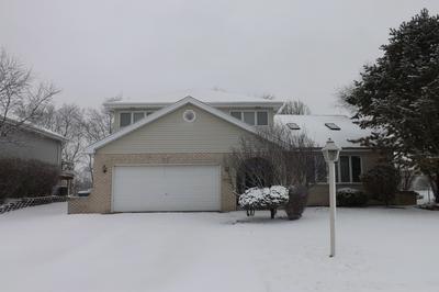 26234 S RUBY ST, MONEE, IL 60449 - Photo 1