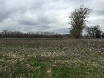 0000 WEST 4000 N ROAD, BONFIELD, IL 60913 - Photo 2