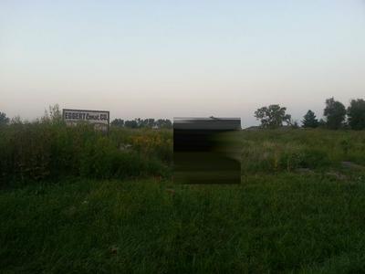 8650 W WILMINGTON RD, Peotone, IL 60468 - Photo 1