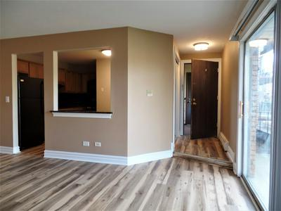 2512 WATERBURY DR APT 704, Woodridge, IL 60517 - Photo 2