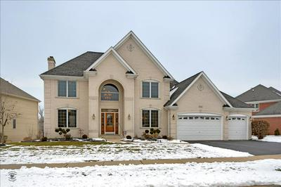 11726 WINDING TRAILS DR, Willow Springs, IL 60480 - Photo 1