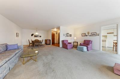 501 LAKE HINSDALE DR APT 102, WILLOWBROOK, IL 60527 - Photo 2