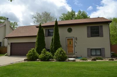 291 PARTRIDGE RUN DR, Braidwood, IL 60408 - Photo 1