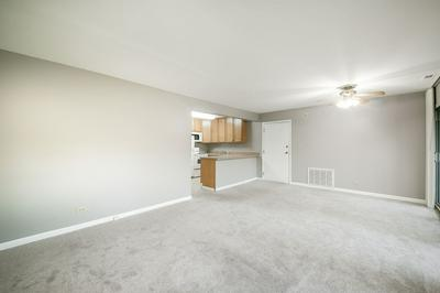 5827 OAKWOOD DR APT F, Lisle, IL 60532 - Photo 2