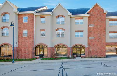 245 BURLINGTON AVE APT 311, Clarendon Hills, IL 60514 - Photo 1