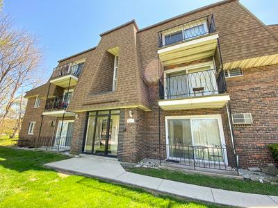 8231 ARCHER AVE APT 7, Willow Springs, IL 60480 - Photo 1