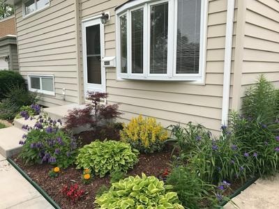 555 S EDGEWOOD AVE, Lombard, IL 60148 - Photo 2