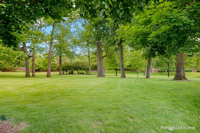 11800 WINDING TRAILS DR, WILLOW SPRINGS, IL 60480 - Photo 2